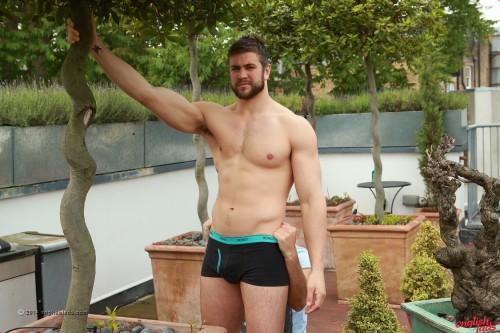 muscle-stud